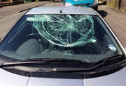 Professional Windscreens Replacement Fremantle